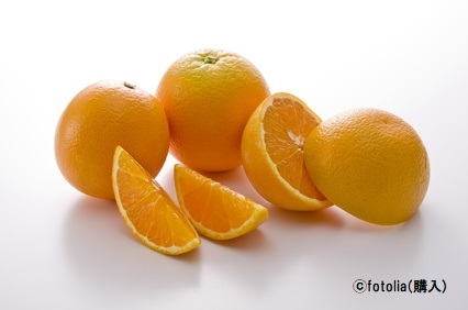 バレンシア・オレンジ~南スペイン訪問~